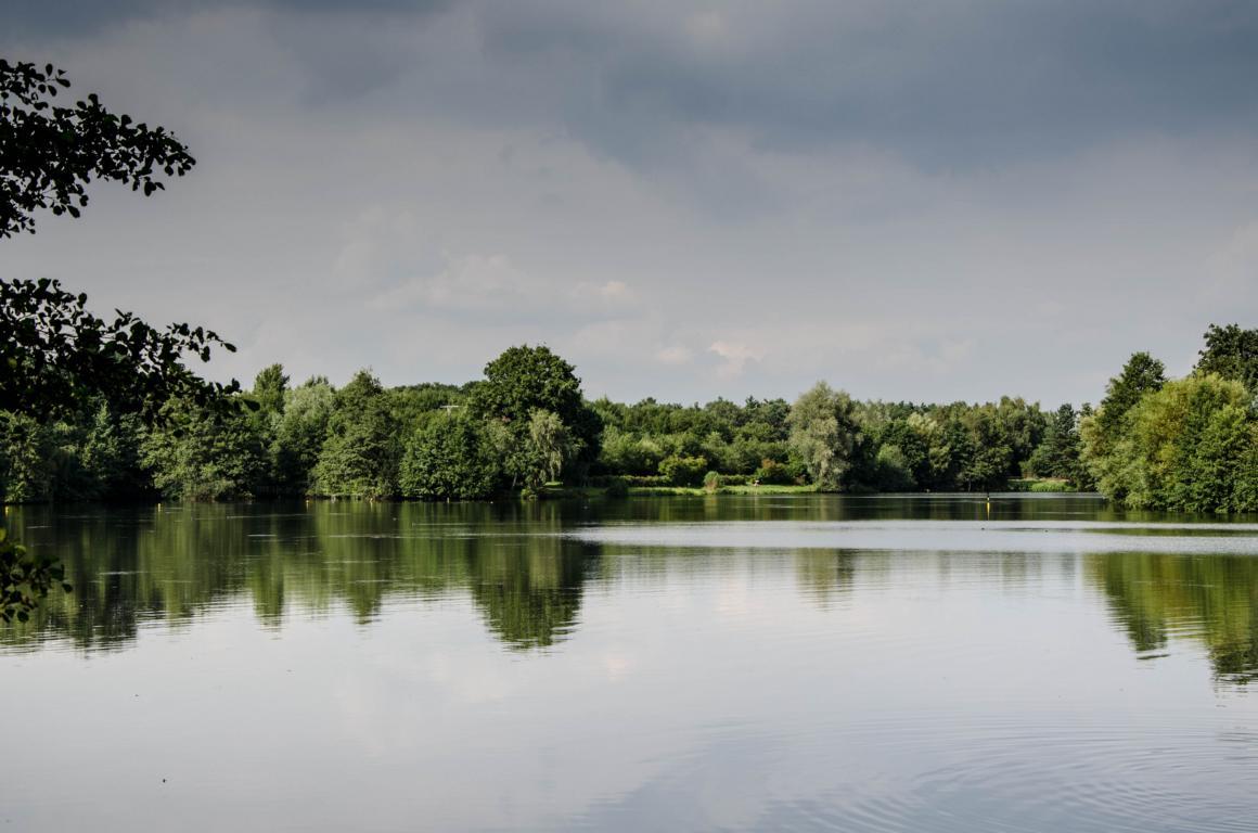 Blick vom Clubhaus über den See